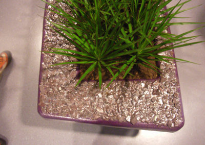 Plantschalen